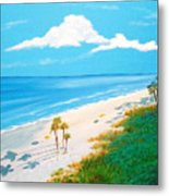 South Carolina Beach Metal Print