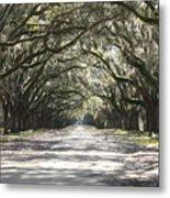 Southern Road Metal Print