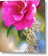 Southern Rose Metal Print