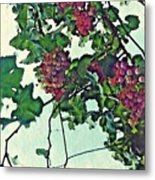 Spanish Grapes Metal Print