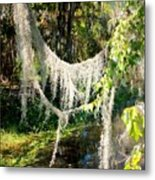 Spanish Moss Over The Swamp Metal Print