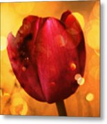 Sparkle Of The Tulip Metal Print by Cathie Tyler
