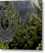 Spider Web Overlook Metal Print