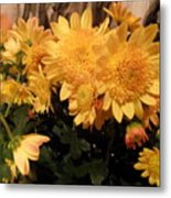 Spirit Of Flower Metal Print