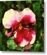 Splash Cerise Metal Print