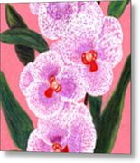 Spotted Orchid Against A Pink Wall Metal Print