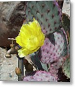 Spring Bloom Metal Print