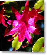 Spring Blossom 15 Metal Print