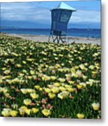 Spring Break Santa Barbara Metal Print