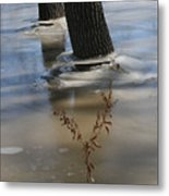 Spring Flood Metal Print