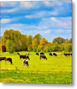 Spring In Holland-1 Metal Print