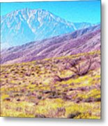 Spring In Whitewater Canyon Metal Print