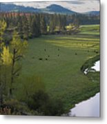 Spring Morning On Palouse River Metal Print