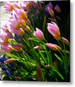 Spring Tenderness Metal Print