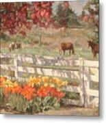 Springtime Horses Metal Print