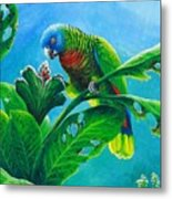 St. Lucia Parrot And Bwa Pain Marron Metal Print