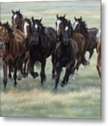 Stampede Metal Print by JQ Licensing