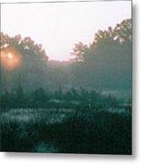 Still Mist Metal Print