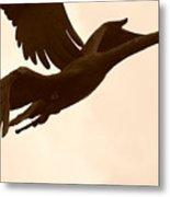 Stone Birds Metal Print