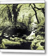 Stream In An Ancient Wood Metal Print