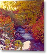 Stream In Autumn  Metal Print