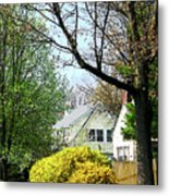 Street With Forsythia Metal Print
