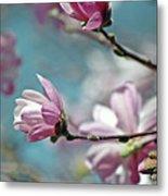 Sugar Magnolia Metal Print