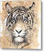 Sumatra Metal Print by Debra Jones