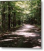 Sun And Shadow Road In Summer  C3pdl Metal Print