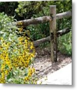 Sun Flower Fence Metal Print