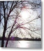 Sundown In Tree Metal Print