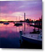 Sunrise Bc Cobb Plant Metal Print