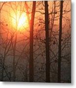 Sunrise In A Foggy Wood Metal Print