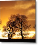 Sunset At Redhill Metal Print
