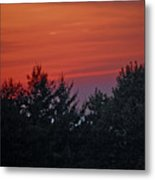 Sunset From Bear Path Metal Print