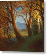 Sunset In The Nebraska Territory Metal Print by Albert Bierstadt