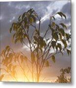 Sunset Leaves 2 Metal Print