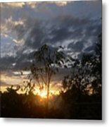 Sunset Leaves 6a Metal Print