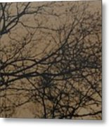 Sunset Snow Metal Print