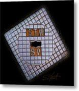 SV Metal Print