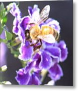 Sweet Bee Metal Print