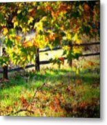 Sycamore Grove Fence 2 Metal Print