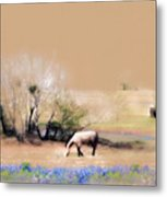 Taking It Slow And Easy Metal Print