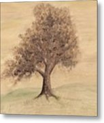 Tea And Coffee Tree Wide Metal Print