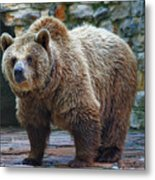 Teddy Bear Alive Metal Print