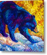 Tentative Step - Black Bear Metal Print