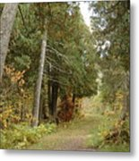 Tettegouche State Park Metal Print