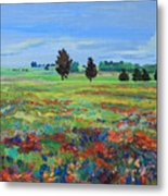 Texas Landscape Bluebonnet Indian Paintbrush Explosion Metal Print