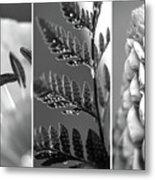 Texture Triptych Metal Print