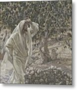 The Accursed Fig Tree Metal Print by Tissot
